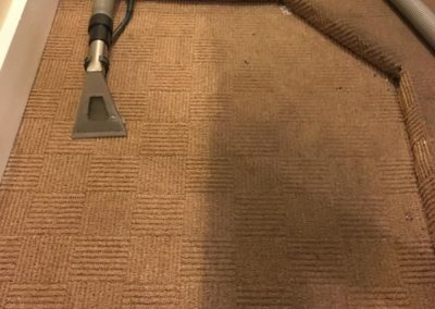 carpet-cleaners022
