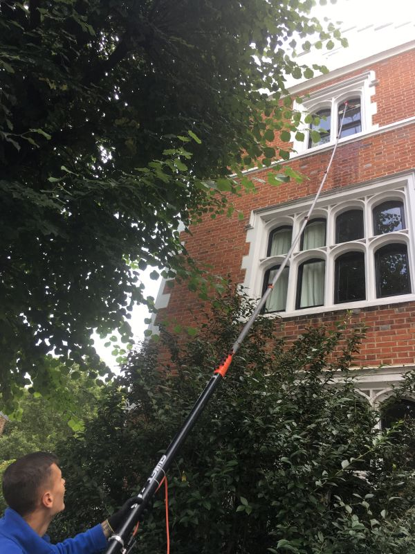 Childs Hill window cleaners